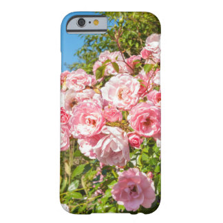 iPhone 6/6s Fall mit schönen rosa Rosen Barely There iPhone 6 Hülle