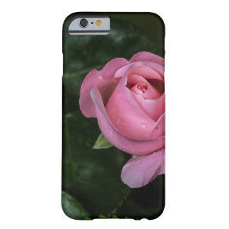 iPhone 6/6s, Rose Barely There iPhone 6 Hülle
