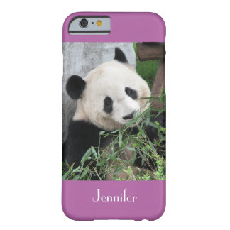 iPhone 6 Fall-riesiger Panda, lila, Orchidee Barely There iPhone 6 Hülle