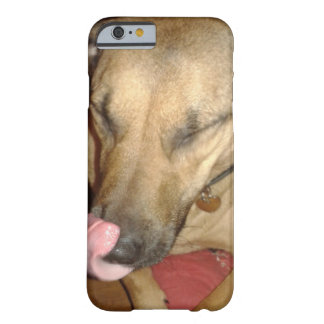 Iphone 6 Funny dog Barely There iPhone 6 Hülle