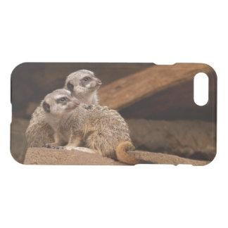 iPhone 7 offenbar Ablenker-Kasten Meerkat oder iPhone 8/7 Hülle