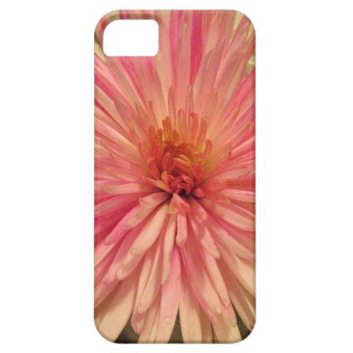 iPhone Fallrosa-Blumenentwurf Hülle Fürs iPhone 5