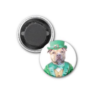 Iren Pitbull Hund Runder Magnet 2,5 Cm