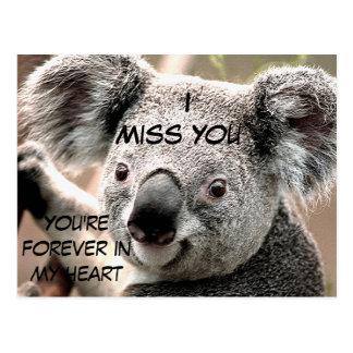 Irgendwelche Gelegenheiten, Koala Bear_ Postkarten