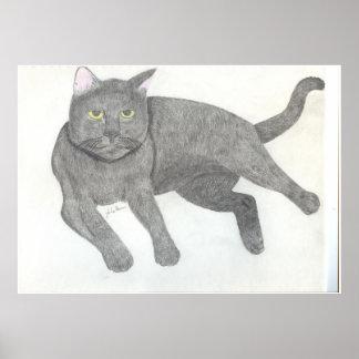 Irina die Katze, die durch Julia Hanna zeichnet Poster