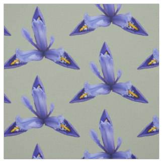 Iris-Gewebe Stoff
