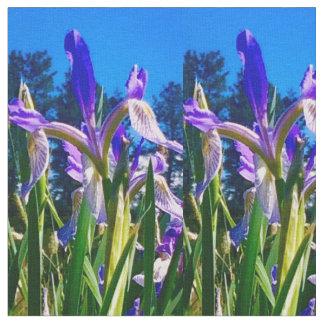 Iris-Licht Stoff