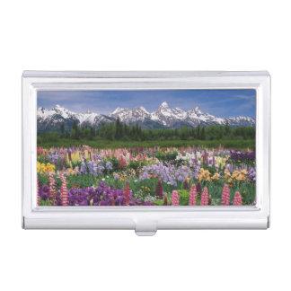Iris- und Lupinegarten und Teton Strecke, Visitenkarten Etui
