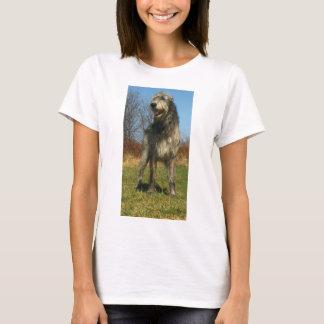 irisch-wolfhound-voll T-Shirt