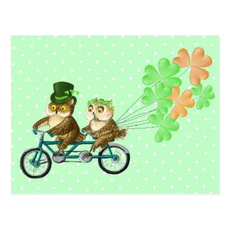 Irische bicyсle Eulen mit Klee baloons Postkarten