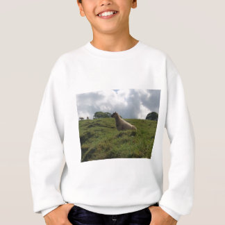 Irische brüllende Schafe in Irland Sweatshirt