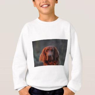 Irischer Setter Sweatshirt