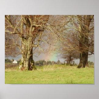 Irisches Holz Poster