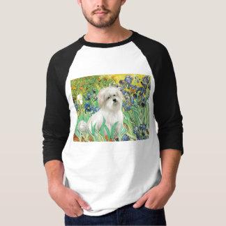 Irisis - Baumwolle de Tulear 7 T-Shirt