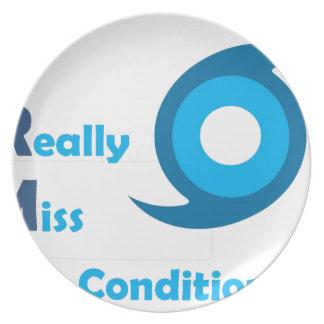 IRMA = verfehle ich wirklich Klimaanlage! Melaminteller
