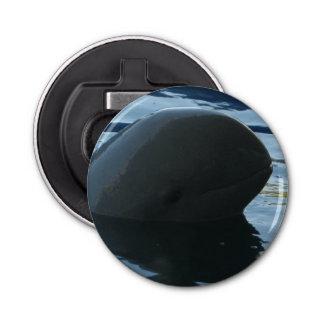Irrawaddy Delphinpeekaboo Runder Flaschenöffner