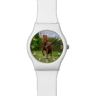 Isländisches Pony Tölt lustiges Foto-Pferd - Armbanduhr