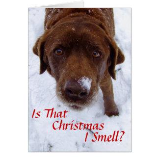 Ist dieses Weihnachten I Geruch? Karte