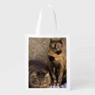 Italien, Cinque Terre, Vernazza. Drei Katzen dazu Wiederverwendbare Einkaufstasche
