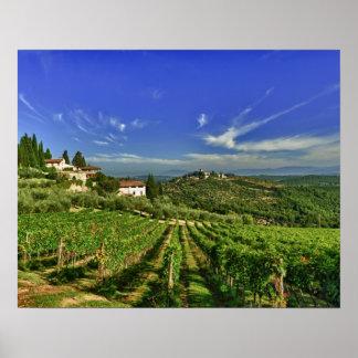Italien Toskana Greve Die Weinberge von Castell Posterdruck