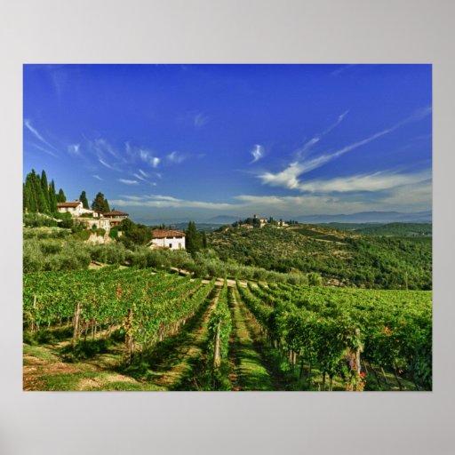 Italien, Toskana, Greve. Die Weinberge von Castell Posterdruck