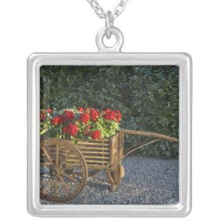 Italien, Toskana. Roter Pelargoniefleck aus heraus Halskette Mit Quadratischem Anhänger