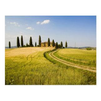 Italien, Toskana, toskanisches Landhaus, das Ernte Postkarte