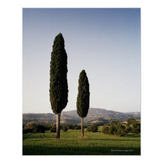 Italien, Toskana, Val d'Orcia Plakatdruck