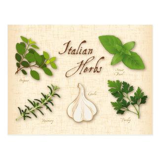 Italienische Kräuter, Basilikum, Oregano, Postkarten