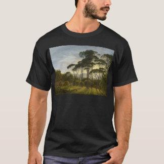 Italienische Landschaftsregenschirm-Kiefern durch T-Shirt