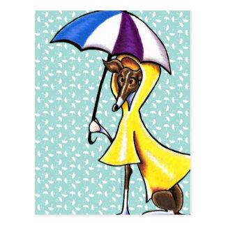Italienischer Windhund-Regenschirm verrückt Postkarte