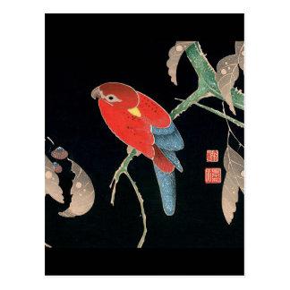 Itoh Jakuchu , 伊藤若冲、檪に鸚哥図 Postkarte