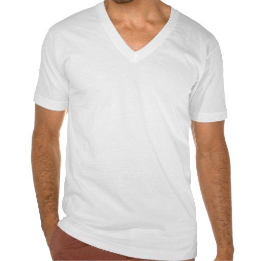 IV Palästina T Shirt