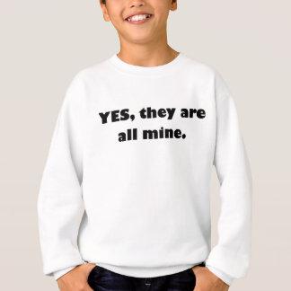 Ja sind sie alles Bergwerk Sweatshirt