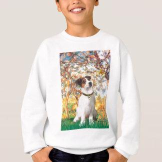 Jack Russell 3 - Frühling Sweatshirt