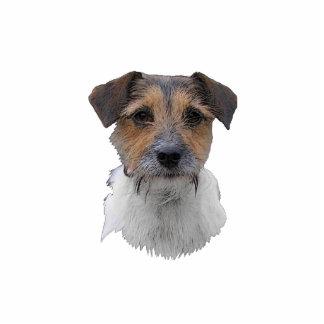 Jack-Russell-Terrier Photo Figur