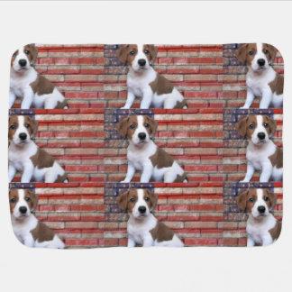 Jack-Russell-Terrier Kinderwagendecke