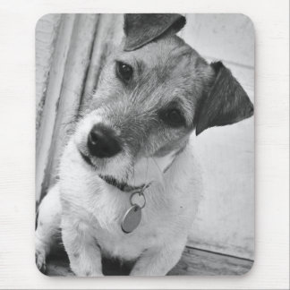 Jack-Russell-Terrier Mousepad