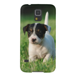 Jack-Russell-Terrierwelpe Galaxy S5 Cover