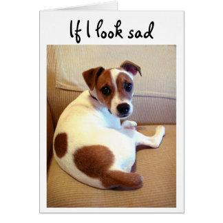 Jack-Russell-Terrierwelpen-Grußkarte Karte