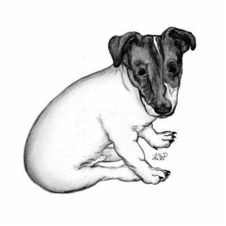 Jack Russell Welpe 10 Wochen alt Fotoskulptur Button