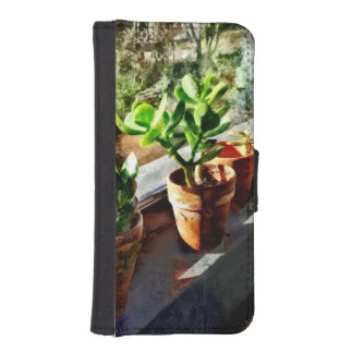 Jade-Pflanzen im Gewächshaus iPhone SE/5/5s Geldbeutel