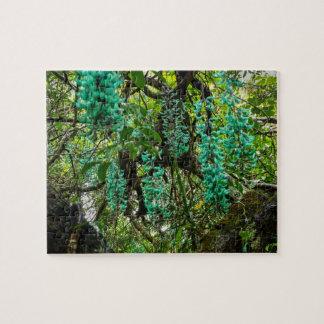 Jade-Rebe, botanischer Garten, Maui, Hawaii, USA Puzzle