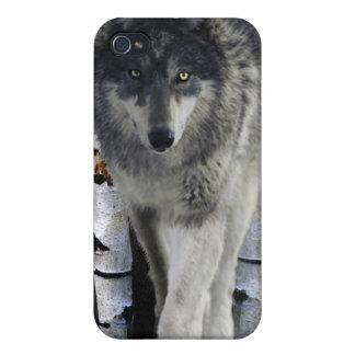 Jagd von grauer Wolf Tier-Anhänger iPhone Fall iPhone 4/4S Hülle