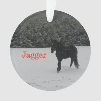 Jagger-Weihnachtsverzierung Ornament