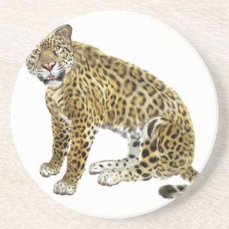 Jaguar, das mit Absicht schaut Getränkeuntersetzer