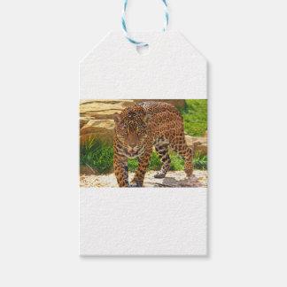 Jaguar Geschenkanhänger
