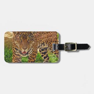 Jaguar Kofferanhänger