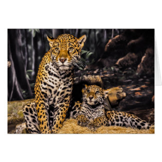 Jaguar-Mamma u. CUB-Gruß-Karte Karte
