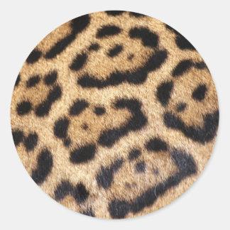 Jaguar-Pelz-Foto-Druck Runder Aufkleber